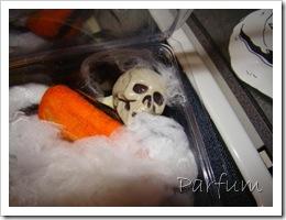 swap halloween 002