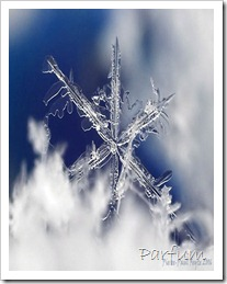 neige-280106-3-s