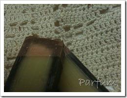 photo iphone mars 2012 024